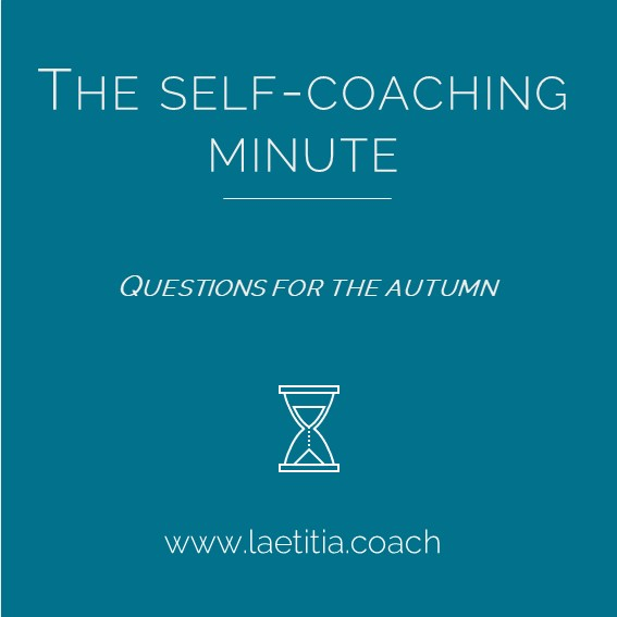 Cover for The Self-Coaching Minute : questions for the autumn